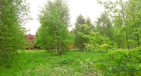 Участок в деревне Новопавловское Волоколамского района Московской обл. - Фото 3