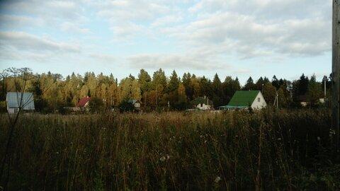Продам участок в деревне Рыгино - Фото 3