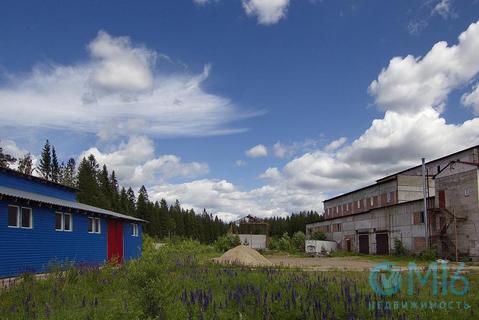 Производственное здание 5500 м на участке 3.5 га - Фото 3
