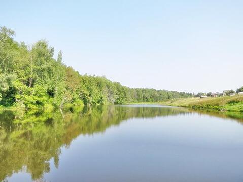 45 соток в лесу! Калужское шоссе, 70 км - Фото 1