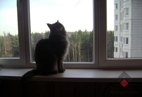1-ка в Одинцово, Кутузовская 31, за 4800000 - Фото 3