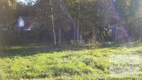 Участок 12 соток с лесными дерев. в деревне Старокурово Ступинский р-н - Фото 1