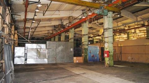 Сдается помещение, площадью 596,8 кв.м. в производственном блоке. - Фото 4
