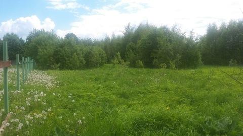 Продаётся земельный участок 15 соток под ИЖС в середине деревни Большо - Фото 5