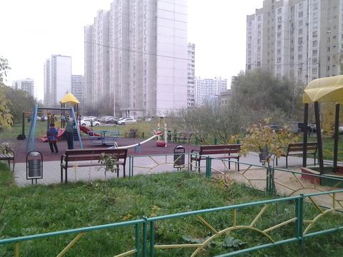 Квартира с евро ремонтом рядом м Новокосино, Купить квартиру в Москве по недорогой цене, ID объекта - 317033239 - Фото 1