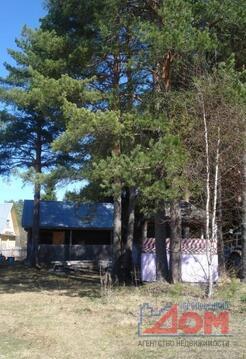 Дом в д. Красный Двор, баня, колодец, гараж - Фото 4
