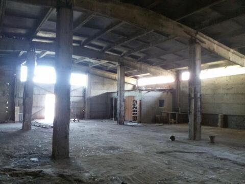 Сдам на длительный срок производственно-складское помещение Вит-комбин - Фото 5