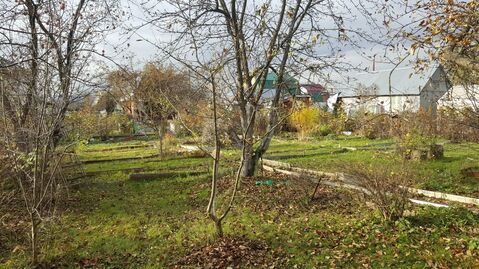 Участок в Подольске, СНТ Василек - Фото 3
