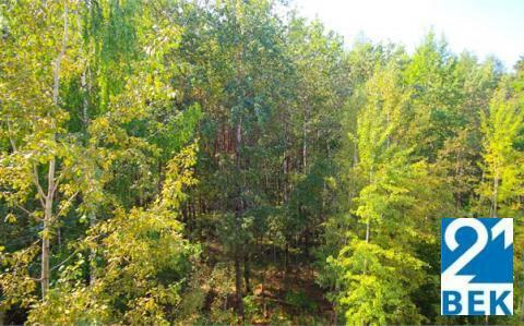 2-х ком.Квартира в лесопарковой зоне, Конаковский район, д.Плоски - Фото 3