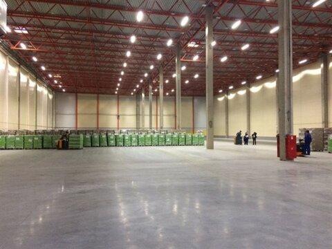 Сдам складское помещение 2400 кв.м, м. Проспект Ветеранов - Фото 3