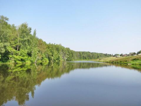 50,7 сот в лесу за 8 млн руб (торг) - Фото 3