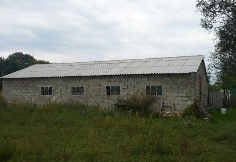 Фермерское хозяйство обоснованное на базе домашнего - Фото 3