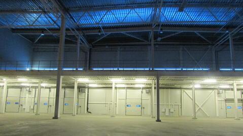 Сдам производство-складские площади 20 000 кв.м. - Фото 3