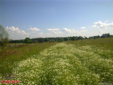 Продается земельный участок, д.Старогромово - Фото 3