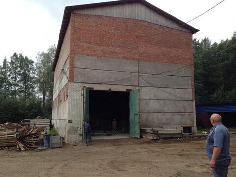 Продам производственное помещение 18000 кв.м, м. Парнас - Фото 2