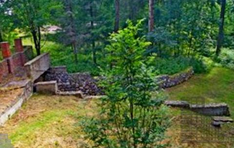Земельный участок 5 га (500 сот.) на берегу Истринского водохранилища - Фото 5