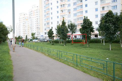 Аренда псн 65,3 кв.м, м. Новогиреево - Фото 2