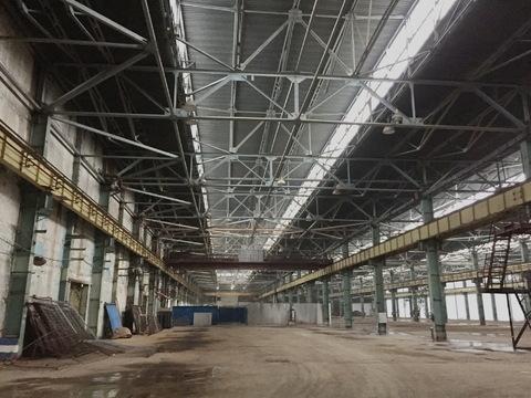 Сдам в аренду производственно-складскую площадь 11600 кв.м. - Фото 2