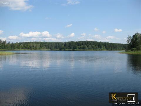 Продажа дачи с земельным участком на Озере Селигер - Фото 1