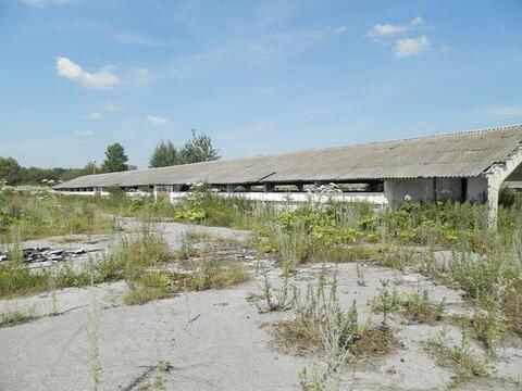 Коммерческая недвижимость, Спас-Конино село, Алексинский район - Фото 3