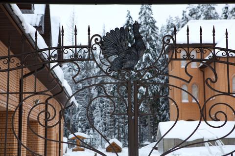 Дом, Киевское ш, Минское ш, 55 км от МКАД, Терновка, деревня. Усадьба . - Фото 1