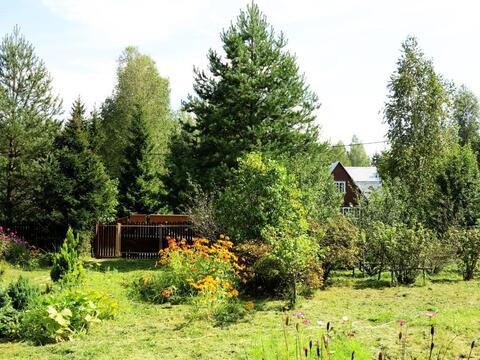 Участок-сад 9 соток, рядом озеро и лес. Магистральный газ. 45 км МКАД. - Фото 3