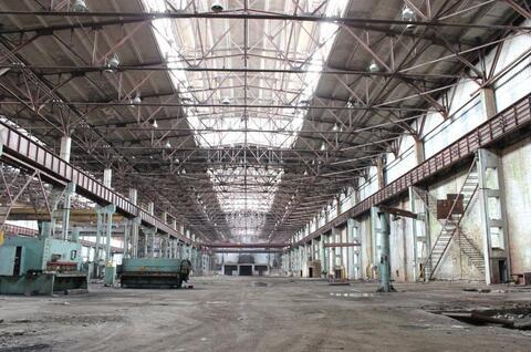 Сдам производственно-складской корпус 62 180 кв.м. - Фото 3