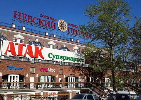 Помещение 234 м2 под ресторан в ТЦ на Адмирала Макарова - Фото 2