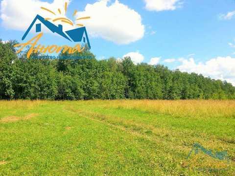 Инвестиционный проект в деревне Кабицыно на участке 3.5 га. - Фото 4