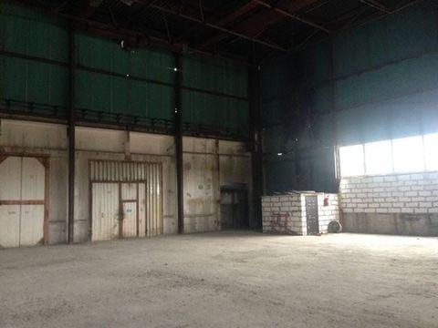 Сдам складское помещение 1400 кв.м, м. Ленинский проспект - Фото 3