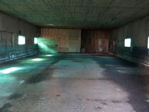 Сдается в аренду ангар под склад, производство 434 м2 Тосненский район - Фото 2