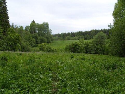 Отличный участок рядом с Былинным озером - Фото 3
