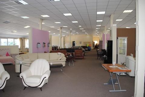 Сдается торговое-офисное помещение 920м2. Центр - Фото 1