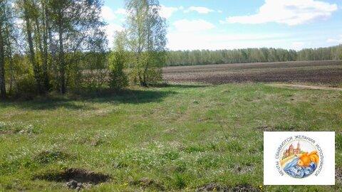 Земля 5 га, под ведение крестьянского хозяйства. - Фото 3