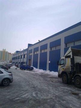 Сдам складское помещение 6500 кв.м, м. Комендантский проспект - Фото 4