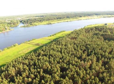 Участок 25 соток 1-я линия между рекой Волга и сосновым бором - Фото 1