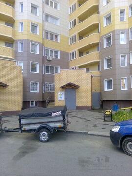http://cnd.afy.ru/files/pbb/max/c/c7/c71376639d76d8955054e1032139239801.jpeg