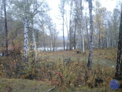 Продажа участка, Усть-Кокса, Усть-Коксинский район - Фото 2