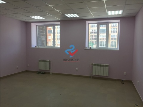 Аренда помещения 62 м2 в Михайловке - Фото 2