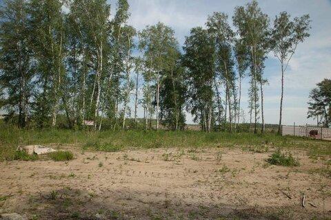 10 соток возле озера Медвежье, черта города - Фото 4