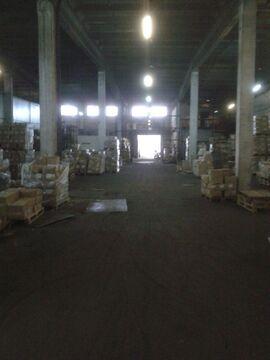 Аренда склада 1300 кв.м с пандусом. Без комиссии - Фото 1