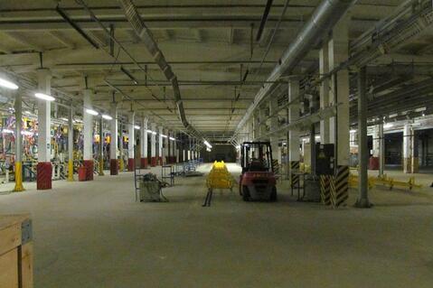 Продажа производственно-складского комплекса с ж/д веткой - Фото 5