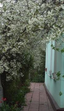 Дом в симферополе - Фото 3