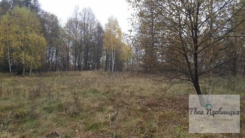 Участок 24 сотки на опушке в деревне Старокурово Ступинский район - Фото 4