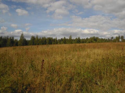 Усадьба 8 га. в 90 км от Нижнего Новгорода - Фото 5