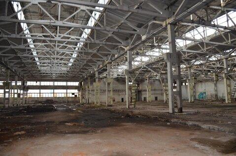 Продам производственно-складскую площадку 58 500 кв.м. - Фото 5