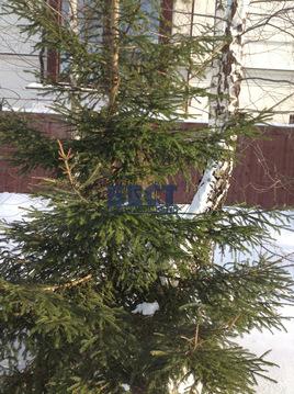 Отдельно стоящее здание, особняк, Рублево-Успенское ш, 17 км от МКАД, . - Фото 5
