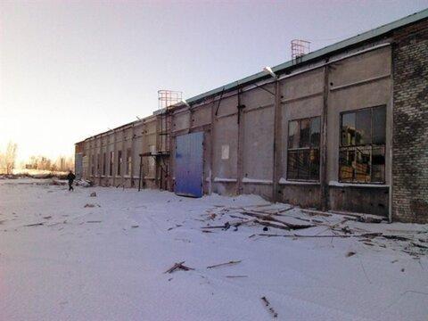 Сдам складское помещение 730 кв.м, м. Проспект Ветеранов - Фото 3