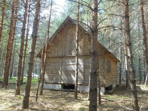 Охотничий домик в лесу вблизи озера - Фото 1