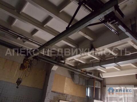 Аренда помещения пл. 464 м2 под производство, , офис и склад, м. . - Фото 3